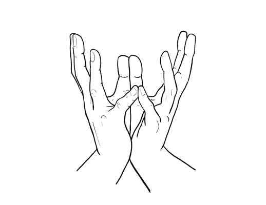 A diagram of the Lotus Mudra